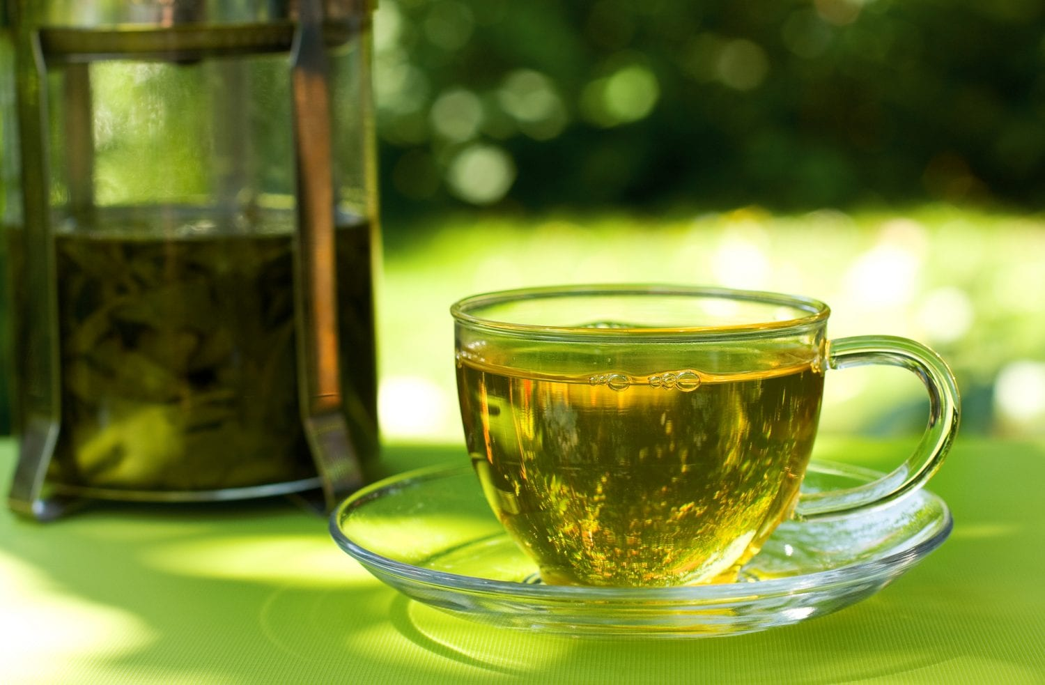 5 Best Tasting Green Teas On The Planet [**Top Brand Revealed**]