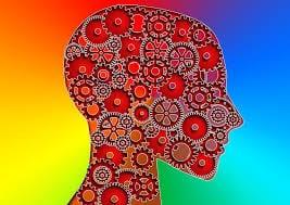 brain function in IBS
