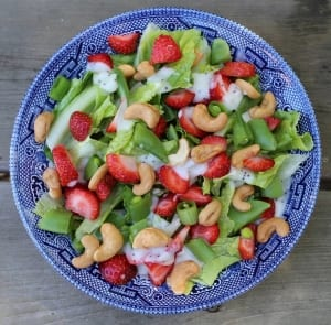 SCD Diet Recipe 2