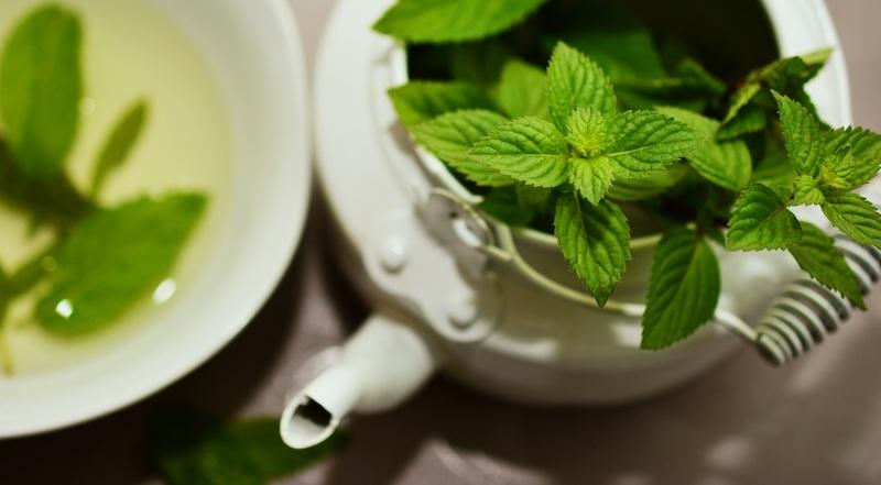 brewing peppermint tea